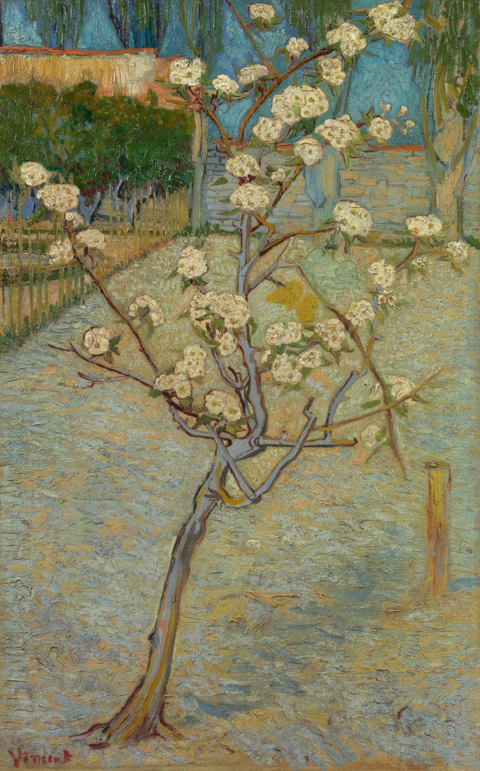 Small pear tree in blossom 1888